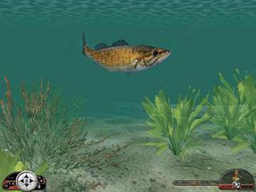 Full in fisherman freshwater trophies version for windows for Freshwater fishing games
