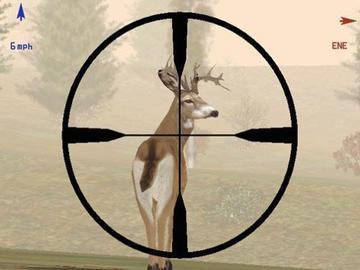 Deer-Hunter-4.jpg